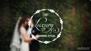 100+婚礼包装标题logo展示AE模板 - 100 Luxury Wedding Titles