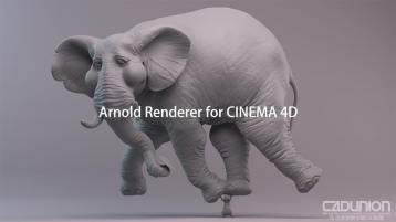 C4DtoA 2.4.1 for Cinema 4D R19-R20 Win 英文替换PJ版
