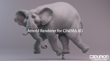 Solid Angle Cinema 4D To Arnold 2.5.2 阿诺德渲染器英文原版Win&Mac版